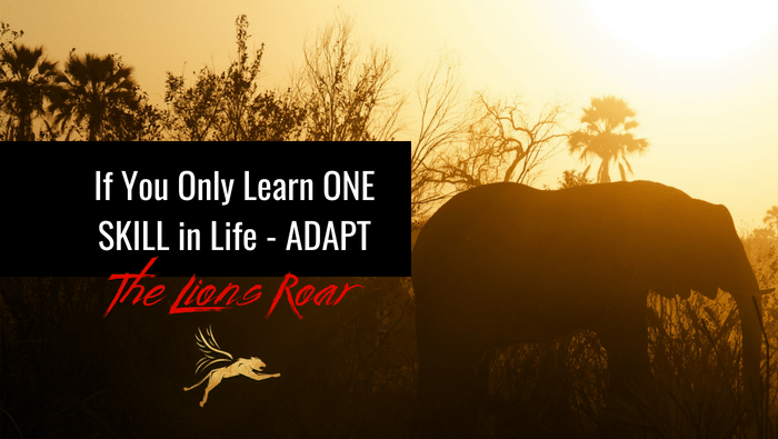 If You Only Learn One Skill in Life – Adapt